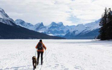 Ski dans les montagnes