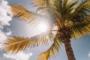 Destination été: vos vacances au soleil
