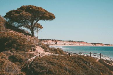 bord de plage en juillet