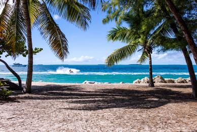 La plage: destination phare pour aout