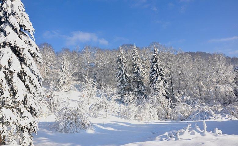 Les meilleures stations de ski des Vosges