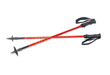 les differentes parties d un baton de ski