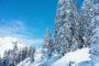 Que faire au ski ?