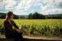 Passer ses vacances d'été en Bourgogne